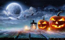 Halloween Angebote Von Tedi