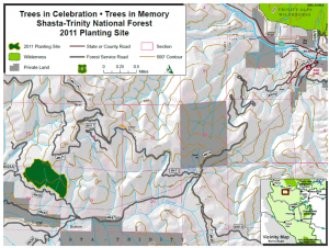 map_shasta-trinity-national-forest